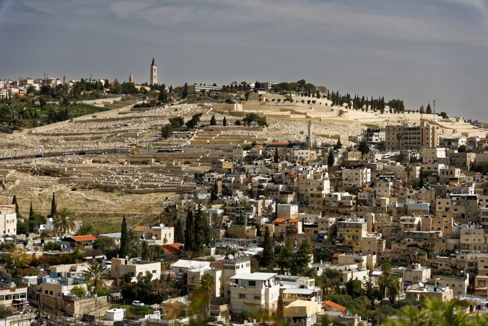 Olivová hora Izrael